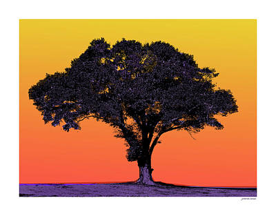 Mixed Media Royalty Free Images - Lone Tree At Sunset Royalty-Free Image by Greg Joens