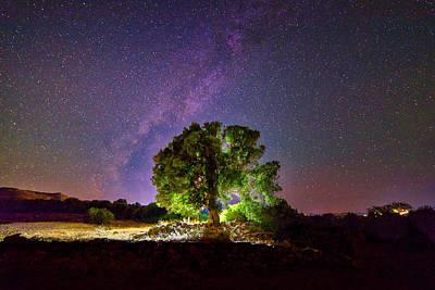 Photograph - Lonely tree under the stars by Manolis Tsantakis