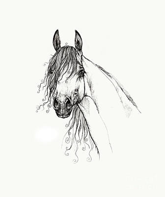 Animals Drawings - Arabian horse head 2011 02 14 by Angel Ciesniarska