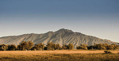 Photograph - Longonot from Hells Gate by Mike Gaudaur