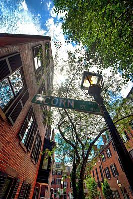 Audrey Hepburn - Looking Up On Acorn Street by Joann Vitali