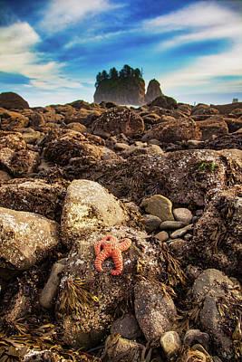 Grimm Fairy Tales - Low Tide on La Push Beach by Ian Good