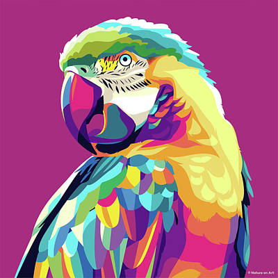 Royalty-Free and Rights-Managed Images - Macaw parrot by Stars on Art