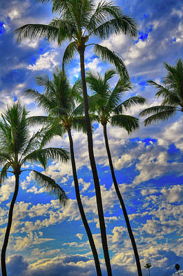 Sean - Magic Maui Morning by Kelly Wade
