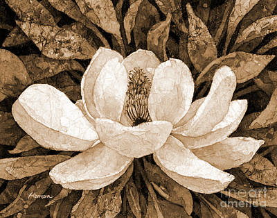 Typographic World - Magnolia Grandiflora in sepia tone by Hailey E Herrera