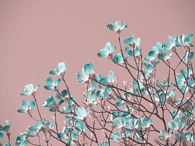 Surrealism Royalty-Free and Rights-Managed Images - Magnolia tree - blue flowers by Marianna Mills