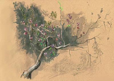 Mixed Media Royalty Free Images - Magnolia tree Royalty-Free Image by Viktoriia Koval