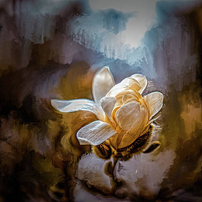 Mixed Media Royalty Free Images - Magnolia white #k9 Royalty-Free Image by Leif Sohlman