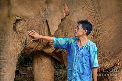 Lee Craker Royalty-Free and Rights-Managed Images - Mahout Em 09 by Lee Craker