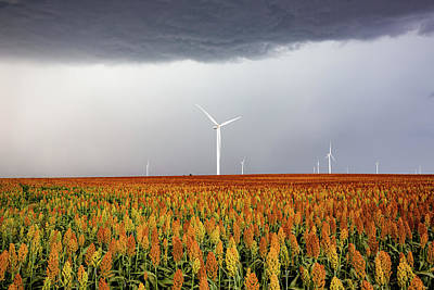 Lucille Ball Royalty Free Images - Maizy Day - Colorful Maize and Wind Turbines in Kansas Royalty-Free Image by Southern Plains Photography