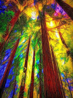 Abstract Trees Mandy Budan - Majesty of the Redwoods by Christina Ford