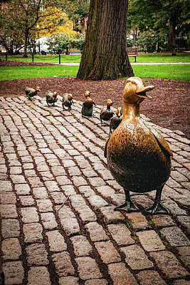Curated Beach Towels - Make Way For Ducklings in the Boston Public Garden by Gregory Ballos