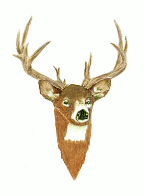 David Bowie - Male Deer #3 by Michael Vigliotti