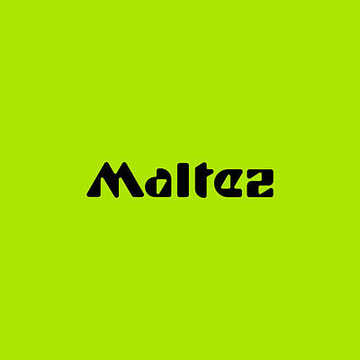 Royalty-Free and Rights-Managed Images - Maltez #Maltez by TintoDesigns