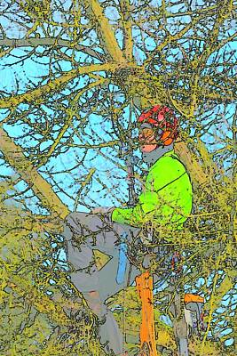 Jerry Sodorff Royalty-Free and Rights-Managed Images - Man Resting In Tree by Jerry Sodorff