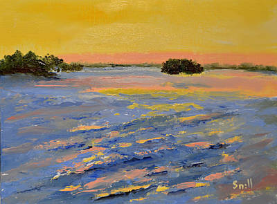 Painting - Mangrove Dawn by Roger Snell