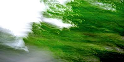 Jerry Sodorff Royalty-Free and Rights-Managed Images - Maple Leaves ICM by Jerry Sodorff