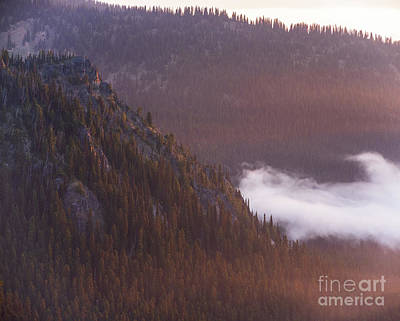 Little Mosters - Marcus Peak Golden Light by Mike Reid