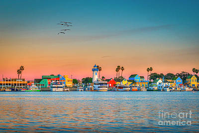 Winter Animals - Marina del Rey Village Sunset by David Zanzinger