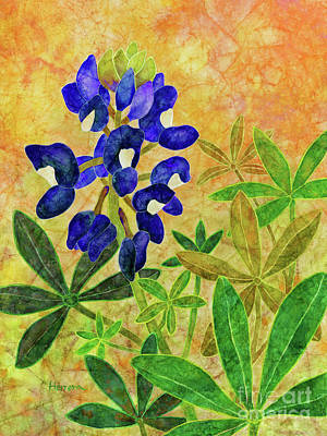 Urban Abstracts - Maroon Bluebonnet-Blue by Hailey E Herrera
