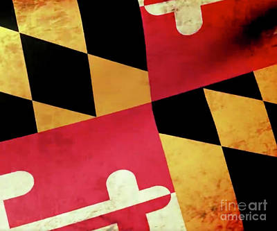 Bath Time Rights Managed Images - Maryland Flag Royalty-Free Image by Joe Barsin