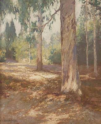 Modern Kitchen - Maurice Braun 1877 1941 San Diego Caeucalyptus Landscape by Artistic Rifki