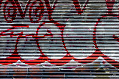 Animal Portraits - Metal Gate and Graffiti by Robert Ullmann