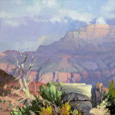 Royalty-Free and Rights-Managed Images - Misty Canyon by Steve Henderson