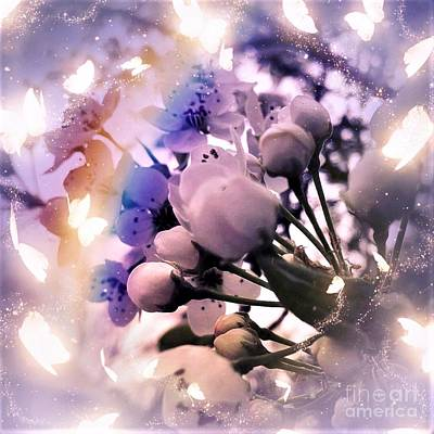 Staff Picks Judy Bernier Rights Managed Images - Misty Day Blossoms #1 Royalty-Free Image by Debra Lynch