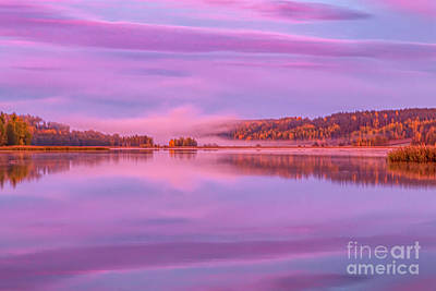 Have A Cupcake - Misty September morning by Veikko Suikkanen