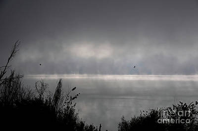 Digital Art - Misty Sunrise At Bald Eagle State Park by Lois Bryan