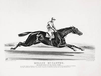 Animals Drawings - Mollie McCarthy - The Racing Queen Of The Pacific Slope - Circa 1878 by War Is Hell Store
