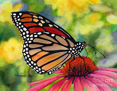 Black And White Flower Photography - Monarch Butterfly by Hailey E Herrera