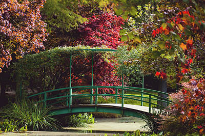 Wild And Wacky Portraits - Monet Bridge at Gibbs Gardens by Mary Ann Artz