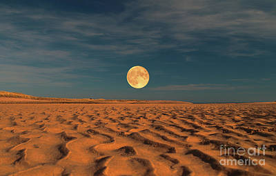 Photograph - Moon Across The Sands by Dave Harnetty