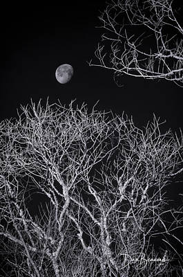 Dan Beauvais Royalty-Free and Rights-Managed Images - Moon and Bare Trees 6957 by Dan Beauvais