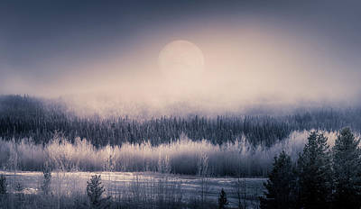 Photograph - Moonlight over the new Winter by Diana Rothgeb