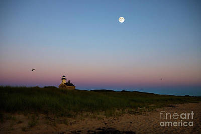 Sheep - Moonrise at the North Light by Diane Diederich