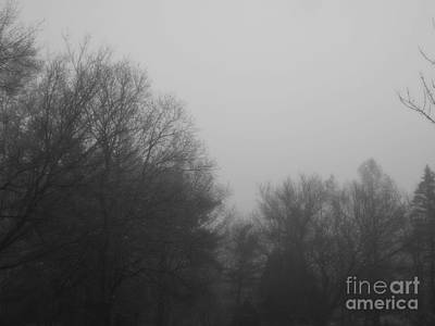 Frank J Casella Royalty-Free and Rights-Managed Images - Morning Fog at the Cabin by Frank J Casella
