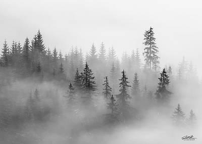 Photograph - Morning Fog by Joe Polecheck