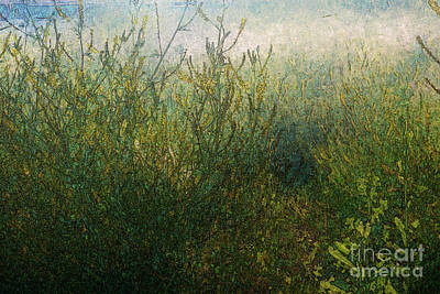 Crazy Cartoon Creatures - Morning Sunlight on Meadow by Katherine Erickson