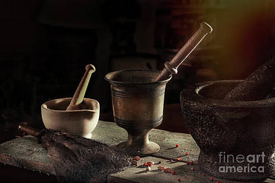 Photograph - Mortar And Pestle  by Eleni Synodinou