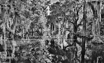 Food And Flowers Still Life - Mossy Reflections Infrared by Dan Sproul