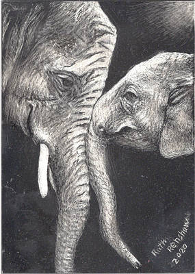 Drawing - Mothers Love by Ruth Renshaw