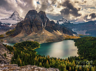 Basketball Patents - Mount Assiniboine and Sunburst Peak Fall Colors by Mike Reid