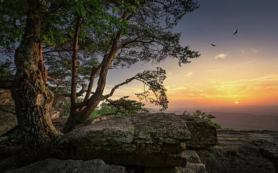 Photograph - Mount Cheaha by Fred Gramoso