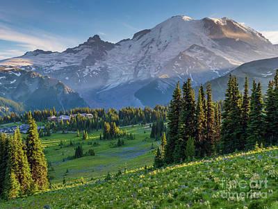 Lovely Lavender - Mount Rainier Dusk Meadows by Mike Reid