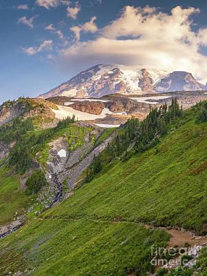 Antlers - Mount Rainier Golden Gate Trail Landscape by Mike Reid