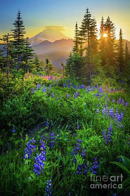 Landmarks Royalty-Free and Rights-Managed Images - Mount Rainier Sunburst by Inge Johnsson