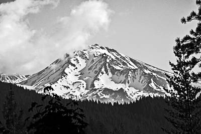 Animal Surreal - Mount Shasta Black and White by Joyce Dickens